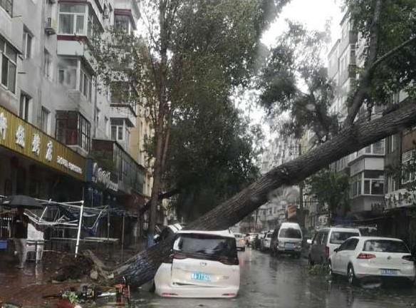 美莎克颱風尚未登陸 哈爾濱房蓋被掀翻一片