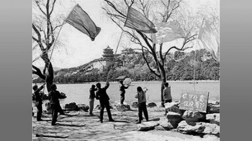 1958年,中共發動7億人民,進行了人類歷史上最荒誕愚昧的一場戰爭,消滅掉了19.6億隻麻雀。(網絡圖片)