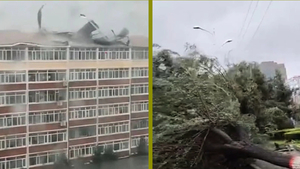 罕見三颱連襲東北  狂風暴雨致產糧區欠收