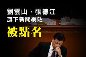江派劉雲山張德江旗下的新聞網站被點名