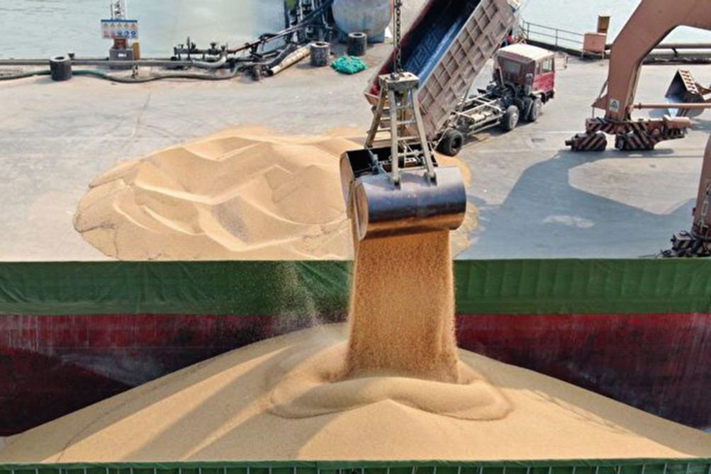 美國農業部9月8日表示,中國買家訂購66.4萬噸美國大豆。圖為美國大豆。(STR/AFP/Getty Images)