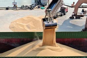 中國買家訂購66.4萬噸美大豆