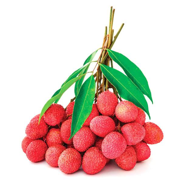 荔枝補脾益肝、 鎮咳養心 吃多小心會得荔枝病