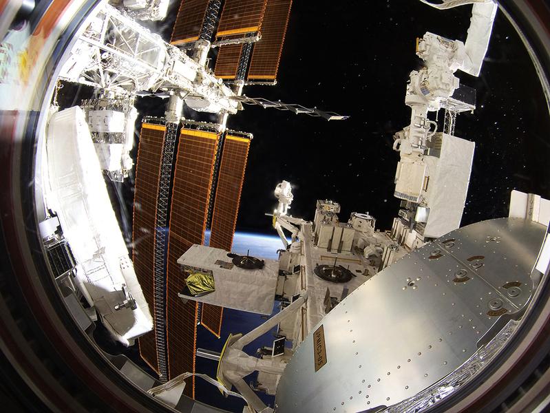 超級細菌在太空可活三年  科學家驚呆