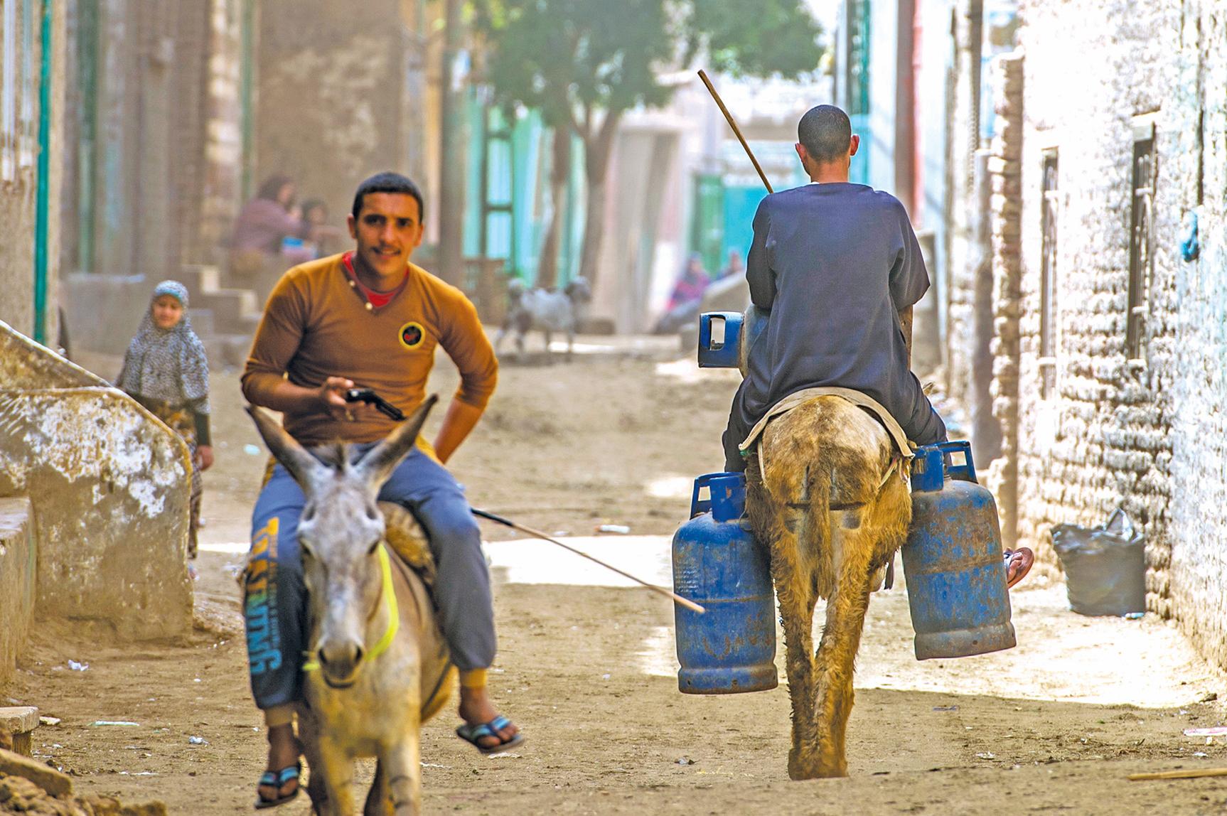 驢子是埃及人的汽車。
