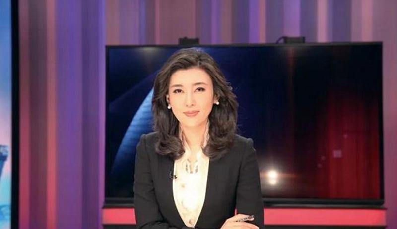 「求和」央視主持人李紅。(影片截圖)