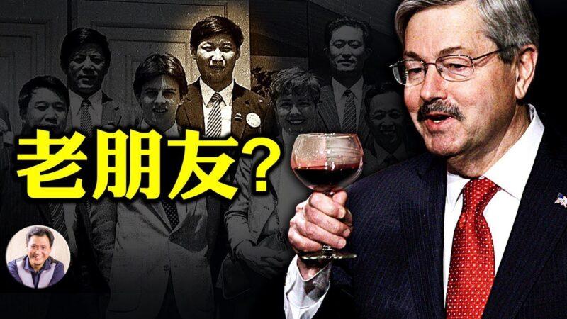【江峰時刻】美駐華大使突離職 不是為了特朗普競選 真實原因解析