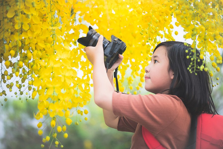 作文選登 :  看見會開花的樹