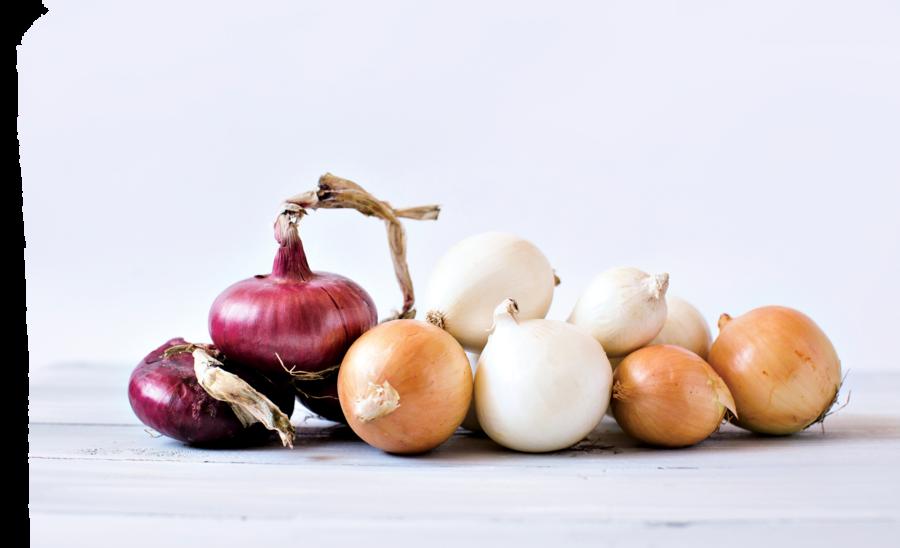 洋蔥─健康身體好幫手