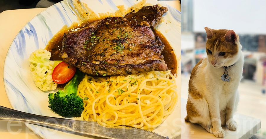 【食遍全港】旺角特色貓貓餐廳
