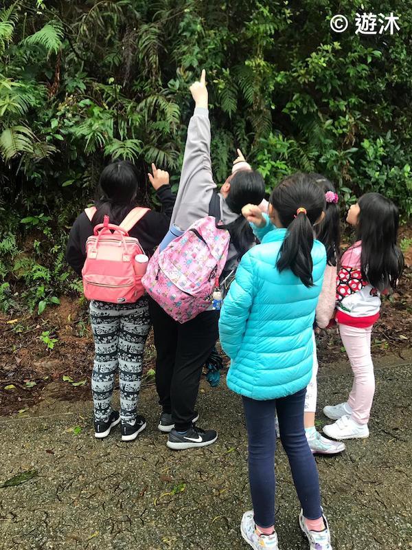 「遊沐」鼓勵小朋友們認識各種身邊的動植物。(受訪者提供)