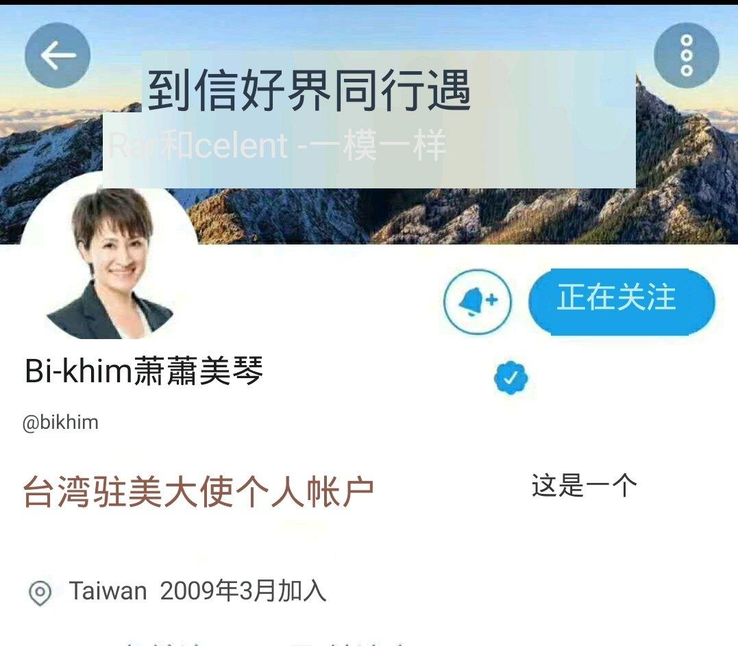 「台灣駐美代表」蕭美琴突然將推特個人帳號改為「台灣駐美大使」,引起外界關注與熱議。(網絡截圖)
