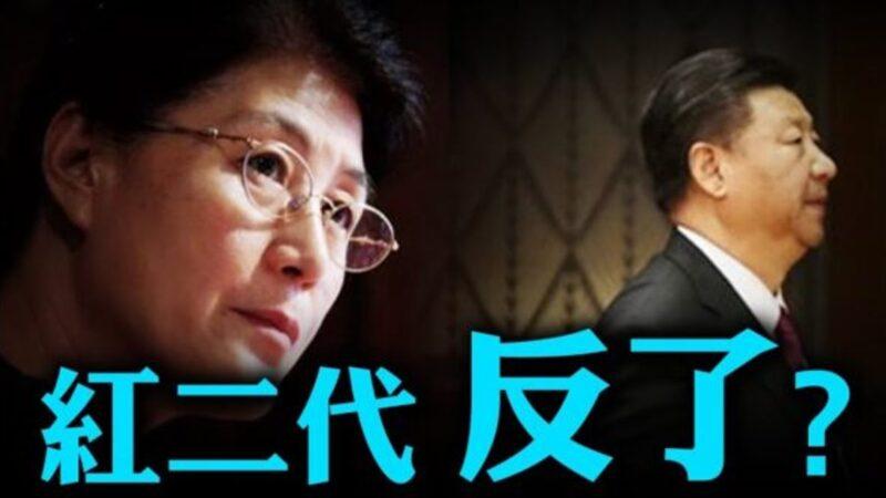 中共中央黨校前教授蔡霞接受採訪時曝料中共黨內有三大派。(影片截圖)