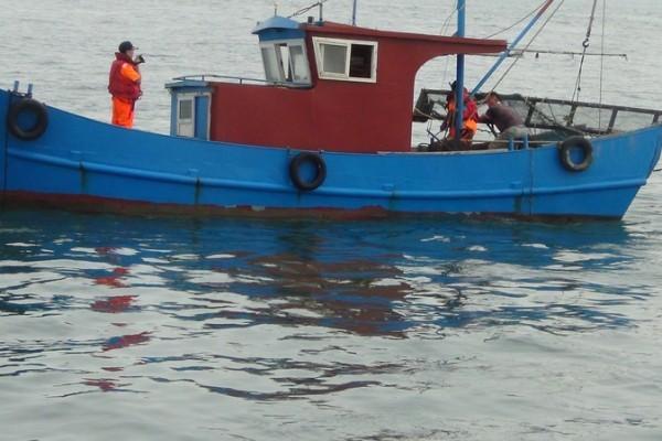 台灣金門海巡隊護漁 逮獲陸船越界電魚