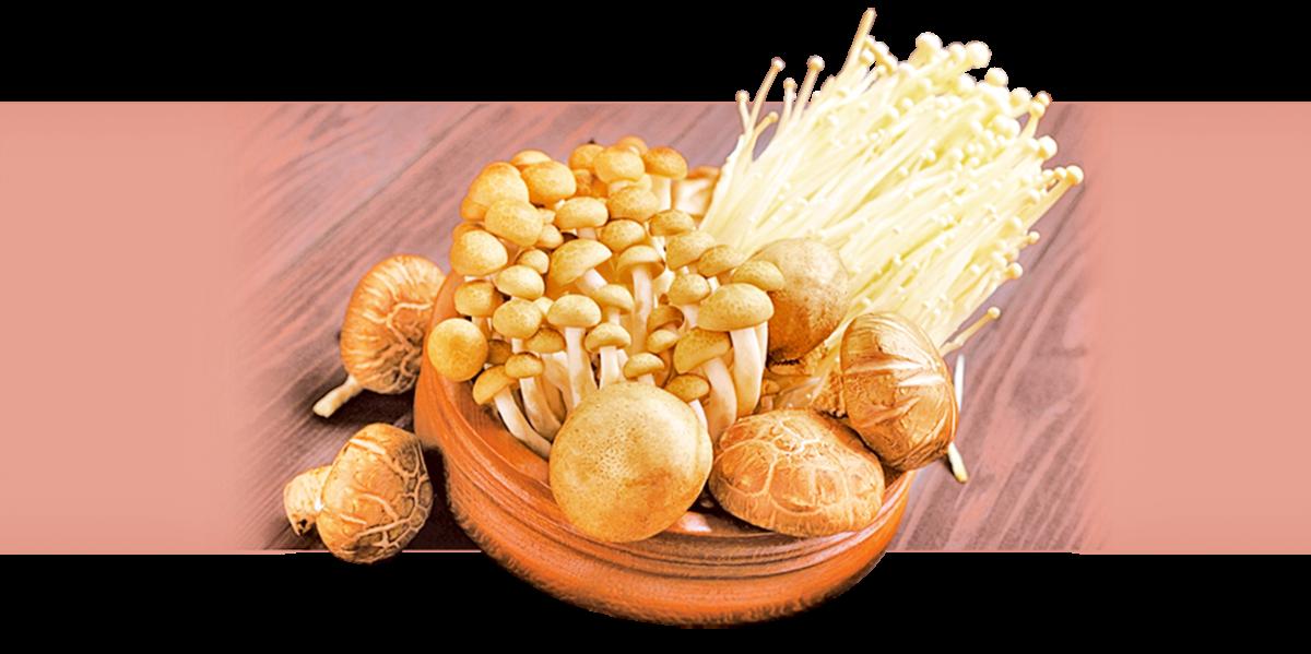 菇類上架冷藏的保鮮期約5~7天,過了保鮮期,口感就會變差。