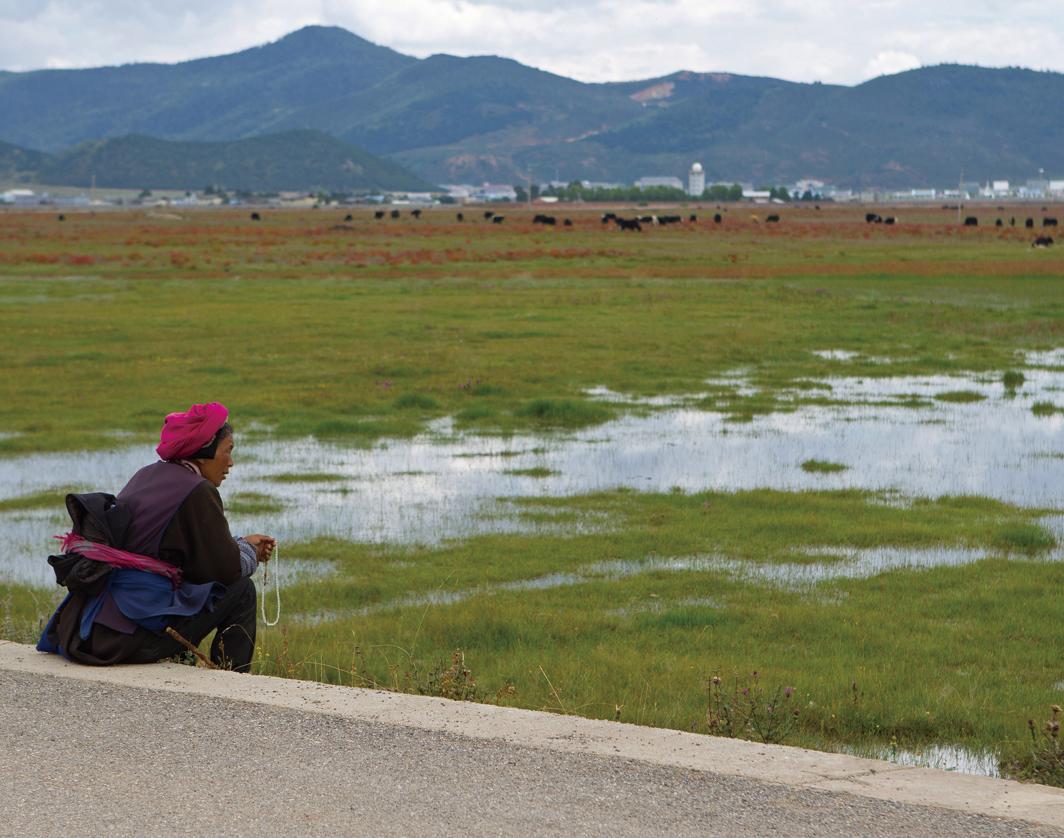 德國學者阿德里安岑茨(Adrian Zenz)9月22日公佈的有關中國藏族的最新調查資料顯示,藏族人正遭受著類似新疆維吾爾族人的迫害。圖為一名藏族婦女,攝於2013年。(AFP)