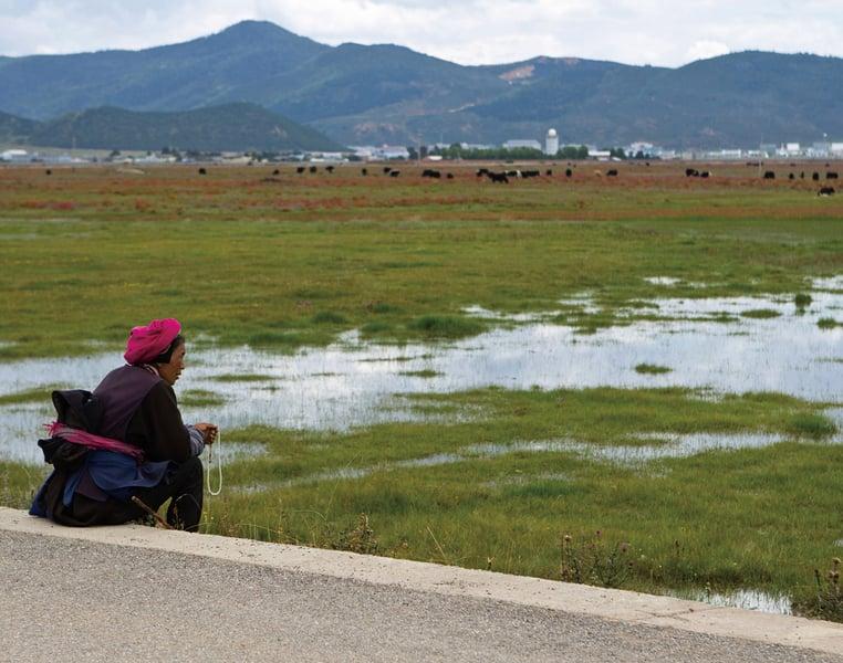中共藉扶貧 強制大量藏人再教育