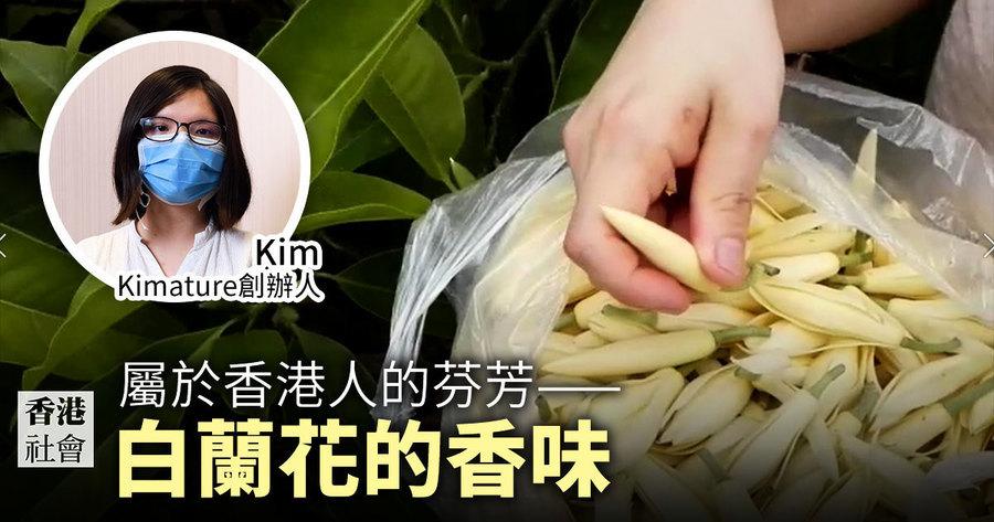 屬於香港人的芬芳——白蘭花的香味