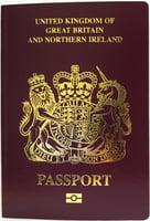 英國更新BNO入境規則 港人或可三代入境英國