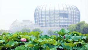 上海東華大學原副校長江建明被立案偵查