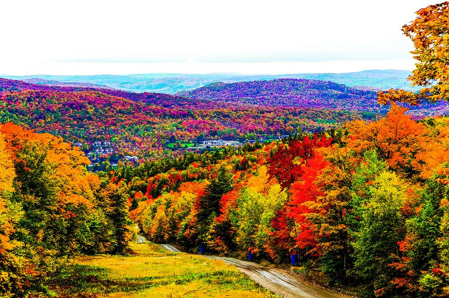 【浮生行吟】山裏的秋