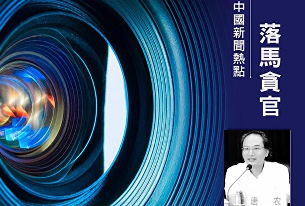 10月3日,廣西中醫藥大學黨委副書記、校長唐農落馬。(合成圖片)