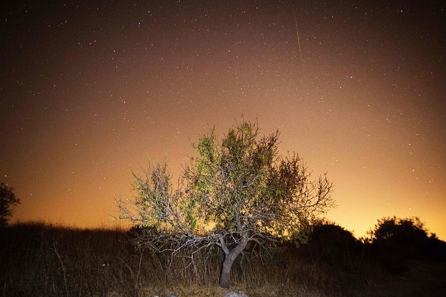8月12日從以色列村莊觀測到的流星雨。(MENAHEM KAHANA/AFP/Getty Images)