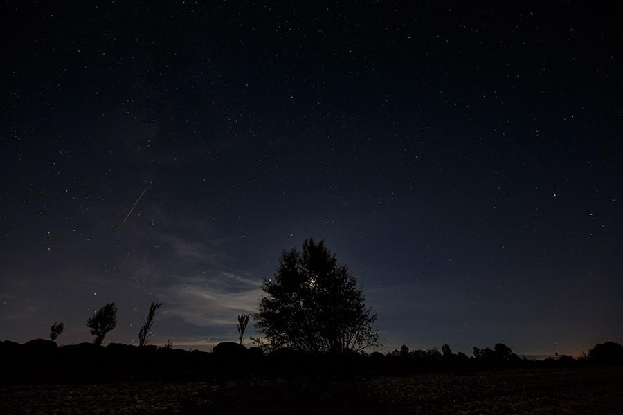 8月12日在西班牙觀測到的流星雨。(CESAR MANSO/AFP/Getty Images)