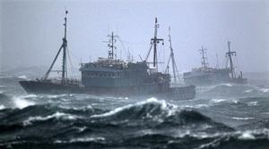 北韓向中共出讓捕漁權 換7500萬美元外匯