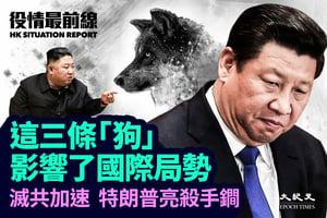 【10.8役情最前線】這三條「狗」 影響了國際局勢