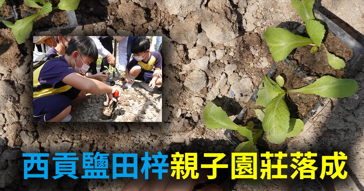 西貢的鹽田梓村親子園莊正式落成。(設計圖片)