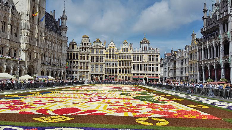 第20屆布魯塞爾花地毯在布魯塞爾大廣場上鋪開。(大紀元)