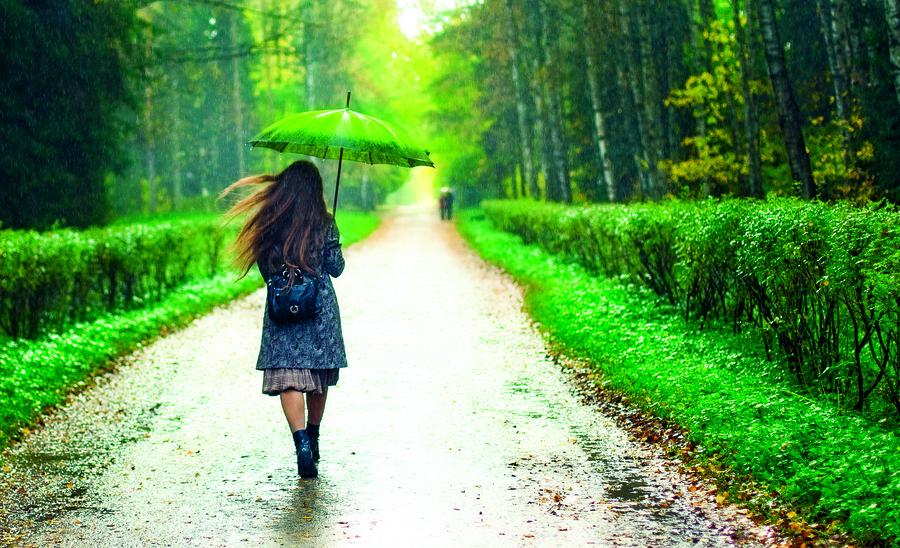 【浮生行吟】換個心境去賞雨