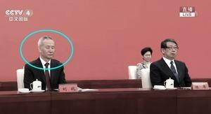 深圳開會 劉鶴閉眼 林鄭與鄰座隔多一張桌