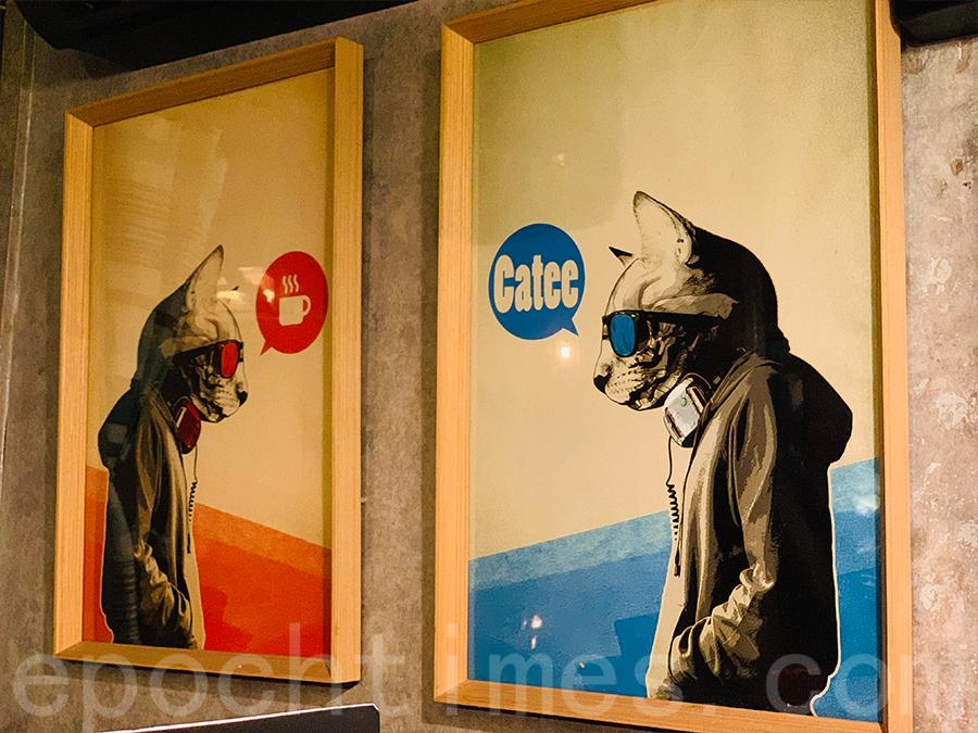 貓主題的餐廳Catee有諸多貓貓裝飾品。(Siu Shan提供)