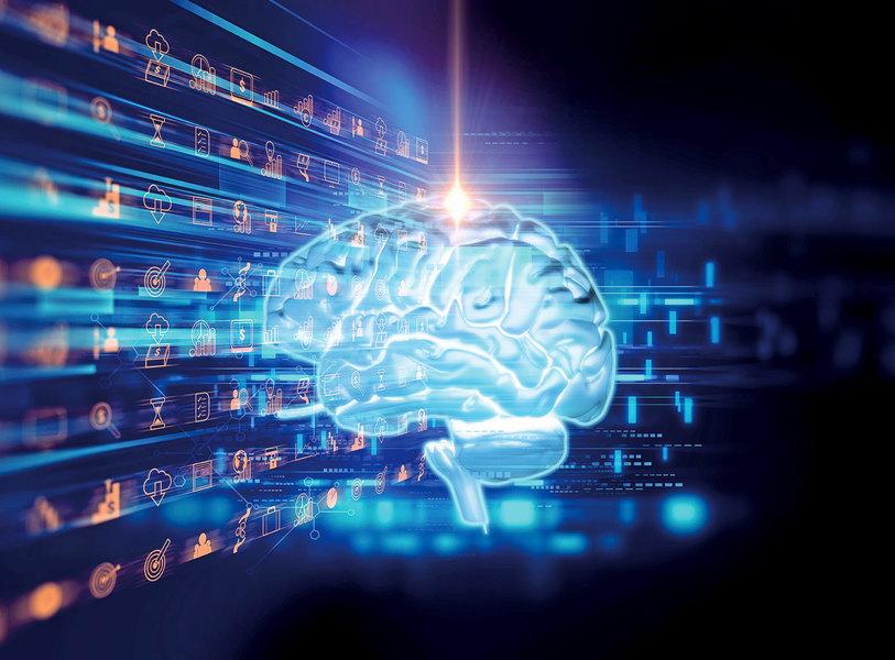 大腦如何基於經驗進行合理猜測