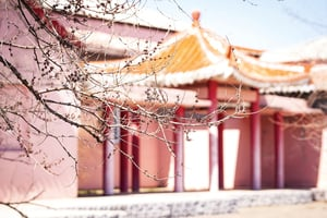 重溫經典——《儒林外史》揭秘古代「高考」(下)