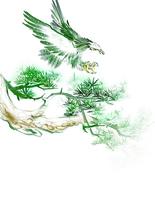 千古神將岳飛傳(十)潁昌、朱仙鎮大捷 與十二道金牌
