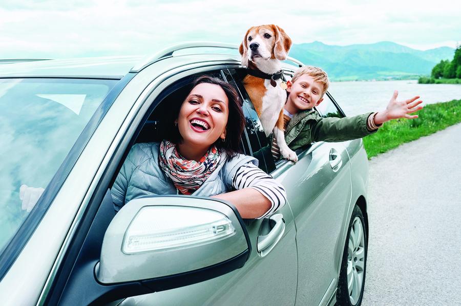 疫情下駕車安全出遊 不可不知的八件事