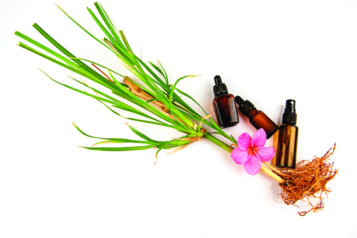 岩蘭草精油氣味偏木質,可以舒緩放鬆肌膚。(shutterstock)