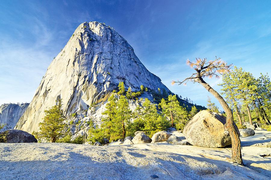 我的山間初夏(下)——國家公園之父約翰繆爾的啟蒙手記
