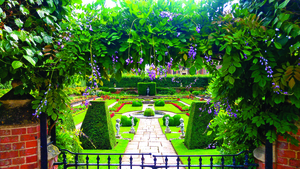 如何打造漢普頓風格的花園?