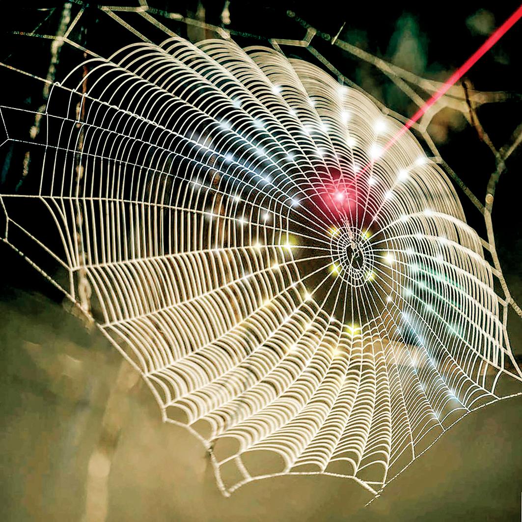 研究人員從蜘蛛網得到靈感,開發了用於生物醫學的三維光電探測器。(SenaHuh / Purdue University)