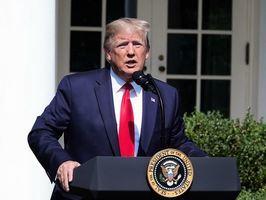 白宮經濟顧問納瓦羅:特朗普結束華爾街瘋狂愚昧