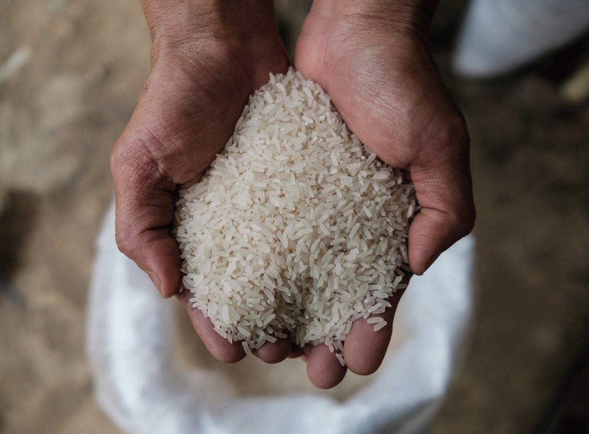 中共正在全球大肆採購粟米、大麥等糧食。圖為資料圖。(ANTHONY WALLACE/ Getty Images)