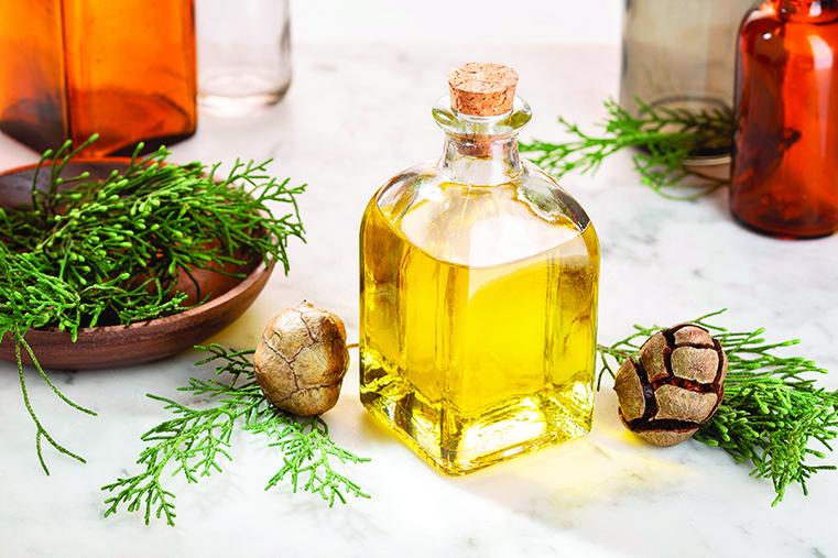 黑雲杉精油的木質香氣給人清新溫暖的感受。
