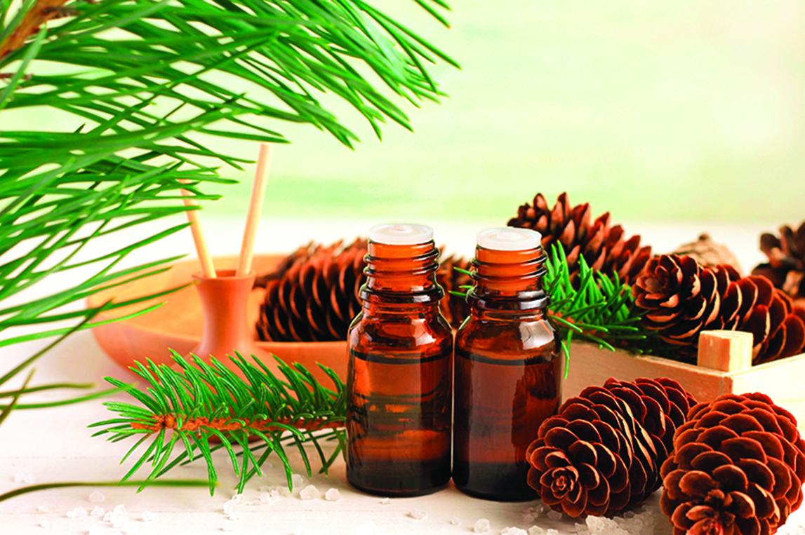 松樹精油充滿新鮮森林的氣息,可以讓人心靈平靜。