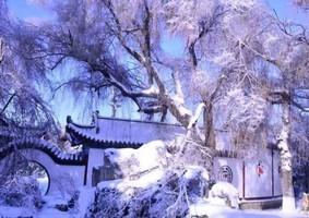 中國東北突降暴雪    多地陷入癱瘓