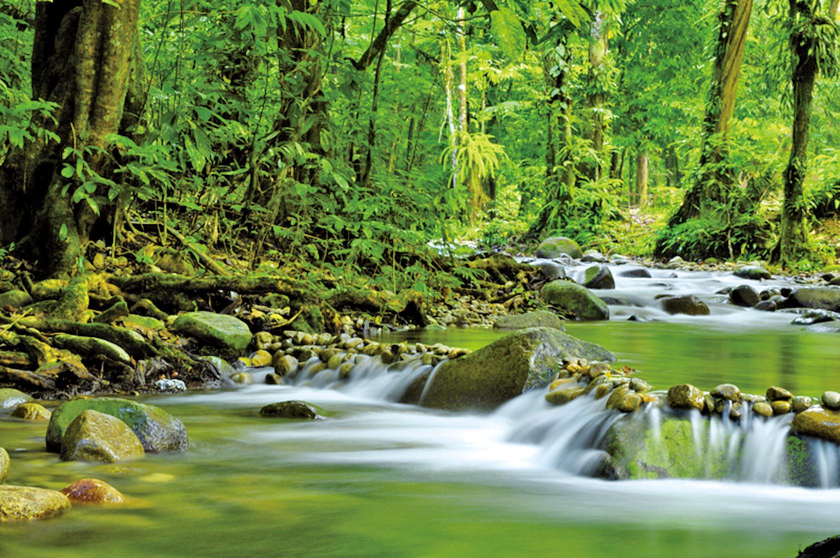 人善用智慧,就像水流淌在大地,如果陣勢凹陷,水就會注滿;人事固執一點,智慧也就無法施展。遍覽古今成敗得失,幾乎都是這個原因。(Fotolia)