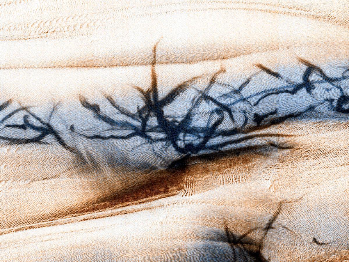 火星軌道探測器拍攝到的火星表面旋風沙塵暴。(NASA/JPL/UArizona)